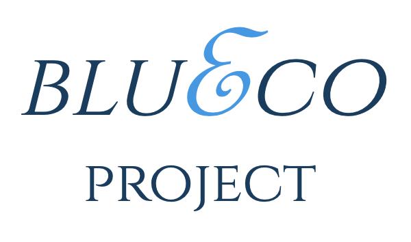 Blue&Co